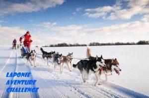 husky traineau de chiens huskies laponie finlande